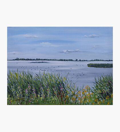 Lauwersmeer Photographic Print