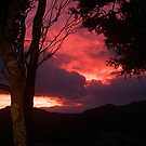 The day's fiery end........................! by Roy  Massicks