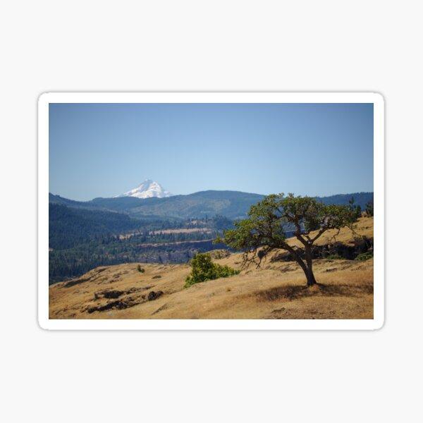 Looking at Mt. Hood Sticker