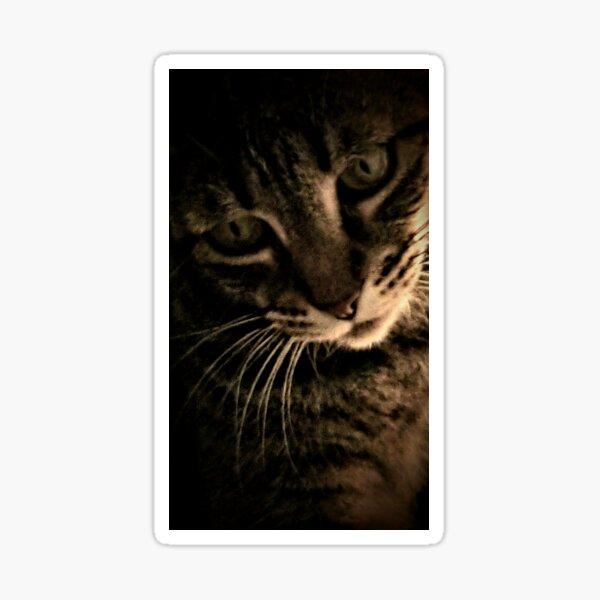Pensive Tiger Sticker