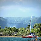 Vanuatu Red Boat by Marcia Luly
