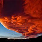 Orange Sierra Wave by Cat Connor