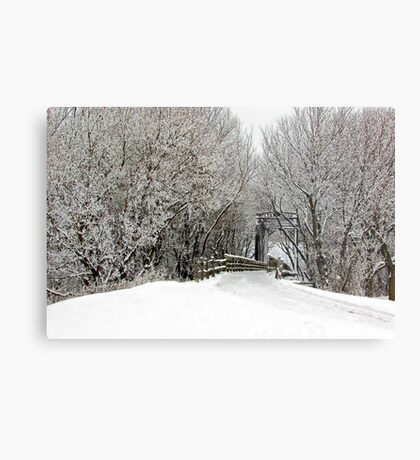 Trestle in the Trees Metal Print