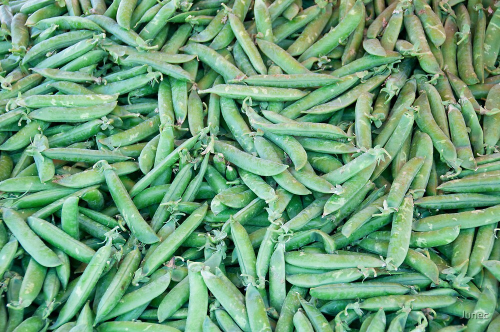 Green Peas by Junec