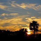 Sunset in St. Lucie by Caren