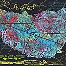 Galaxy Meteorite (sold on ebay in 2004) Winner Dave G. Freeman by aaron a amyx