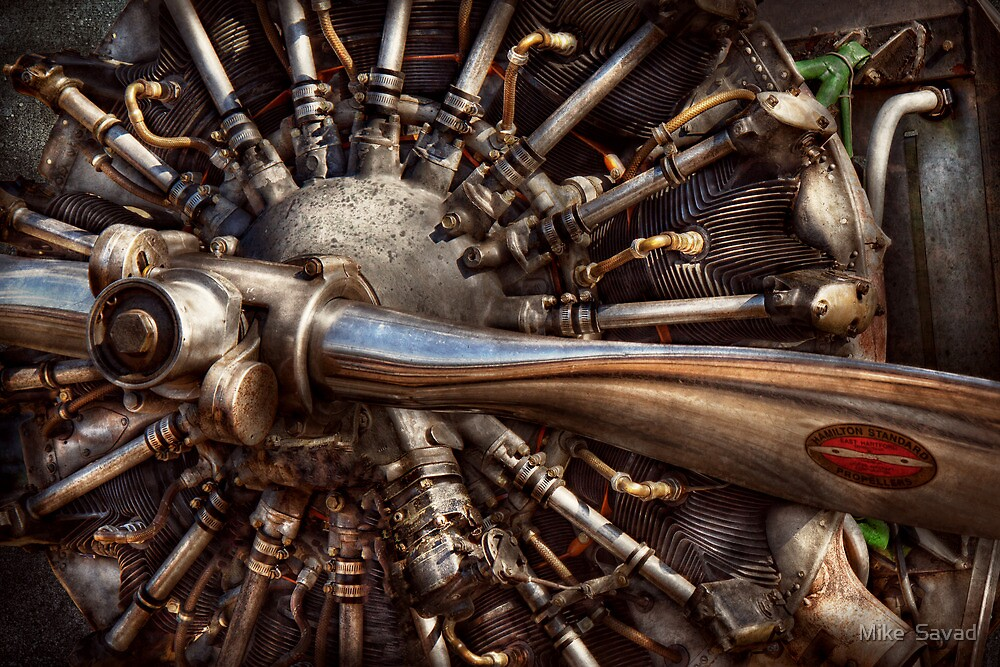 Pilot - Plane - Engines at the ready  by Michael Savad