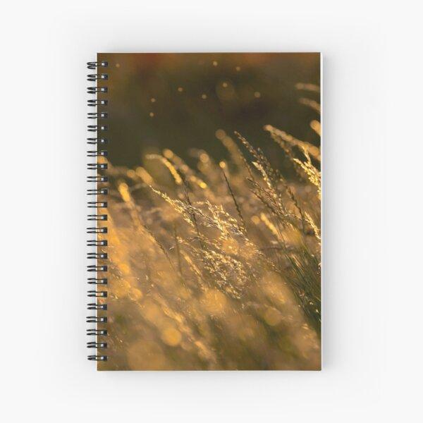 Summer Grasses 2 Spiral Notebook