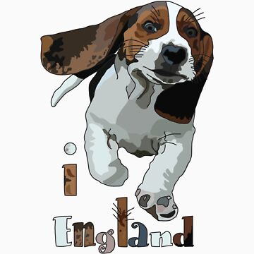 I LOVE ENGLAND T-shirt by ethnographics