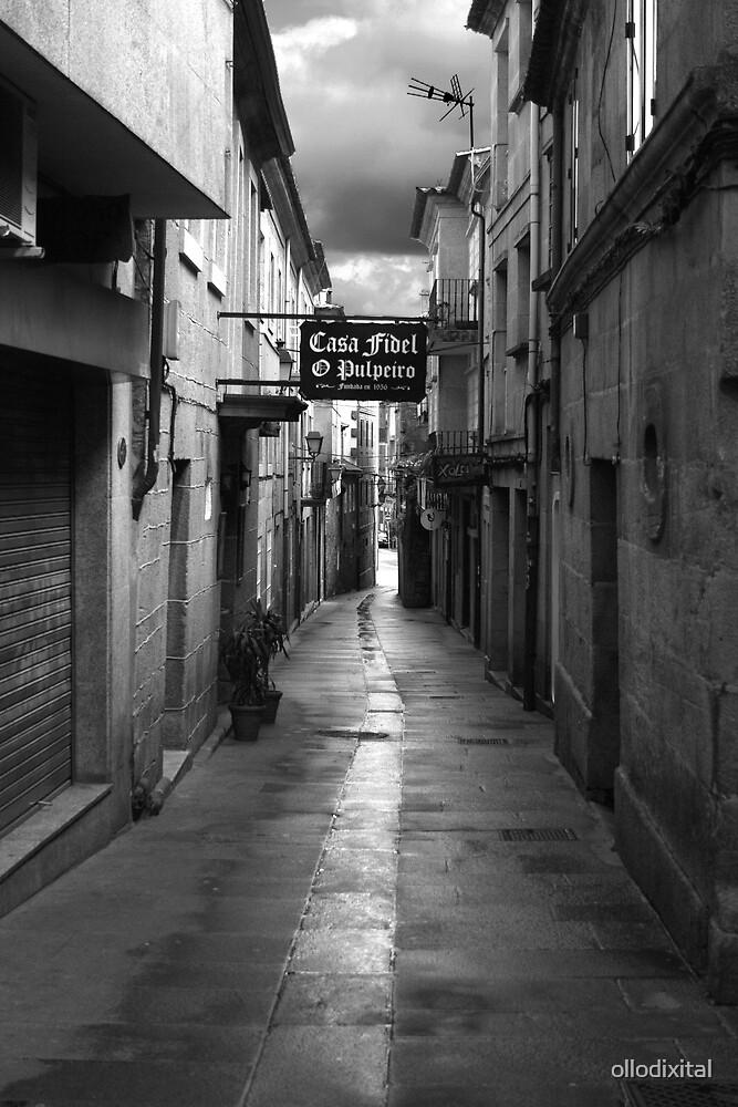 Pontevedra Town by ollodixital