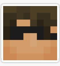 Sky Does Minecraft face Sticker
