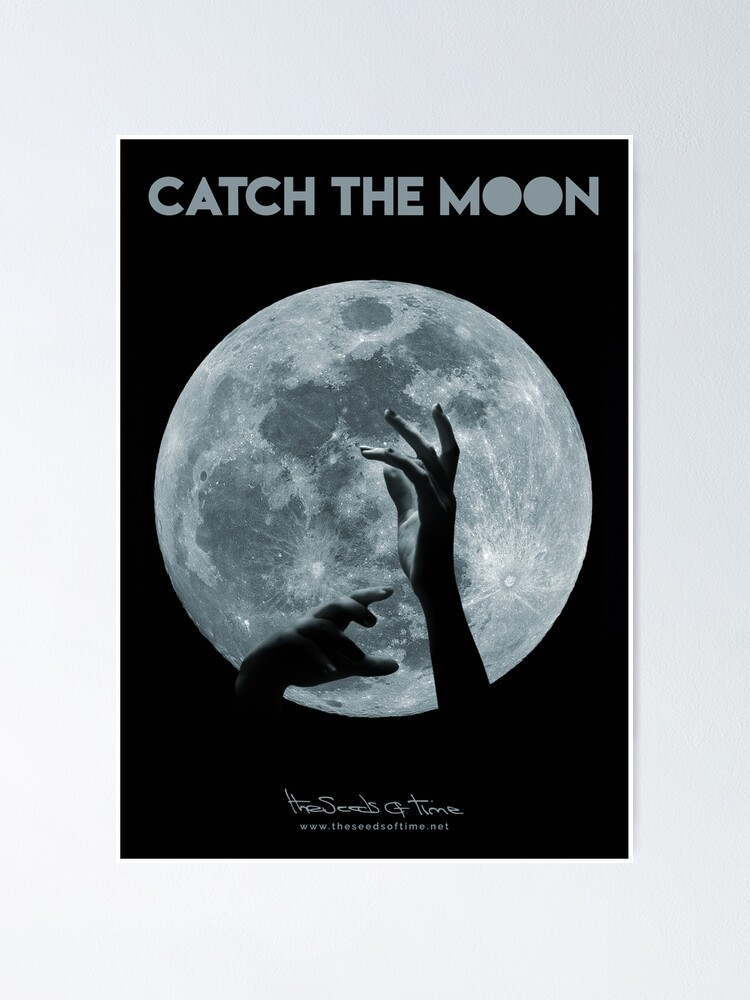 Alternate view of Catch the Moon II Poster