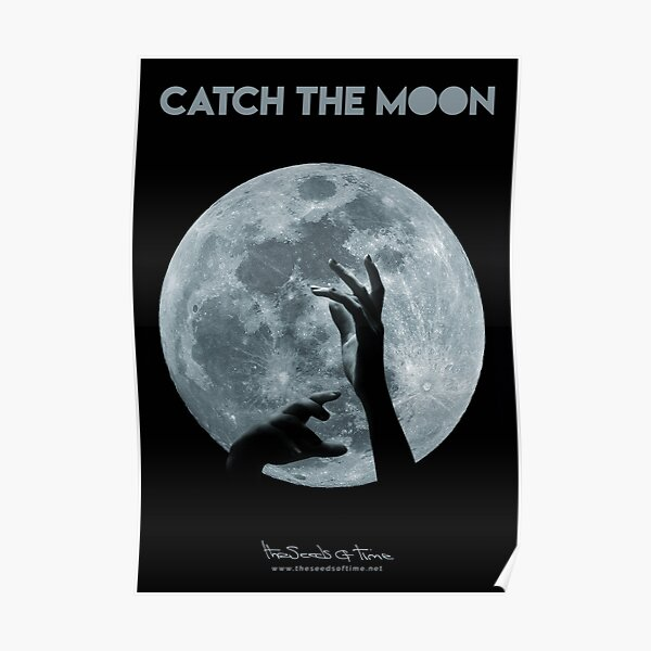 Catch the Moon II Poster