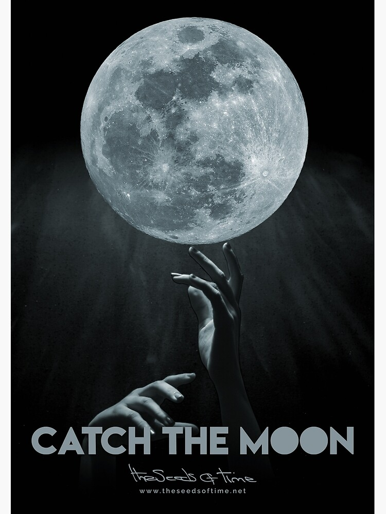 Catch the Moon by theseedsoftime
