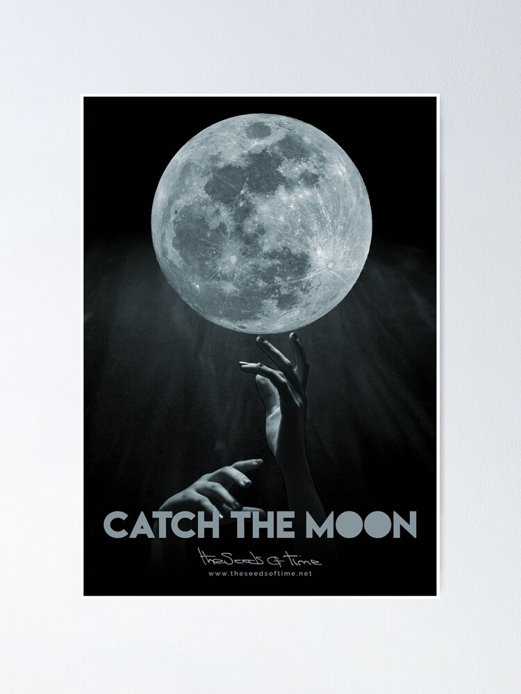 Alternate view of Catch the Moon Poster
