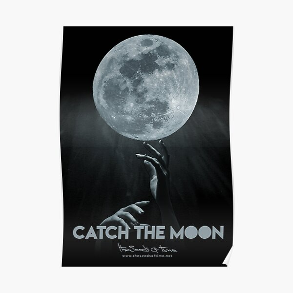 Catch the Moon Poster