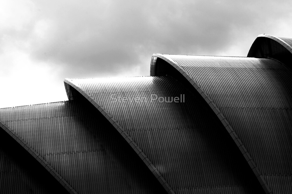 The Armadillo by Steven Powell