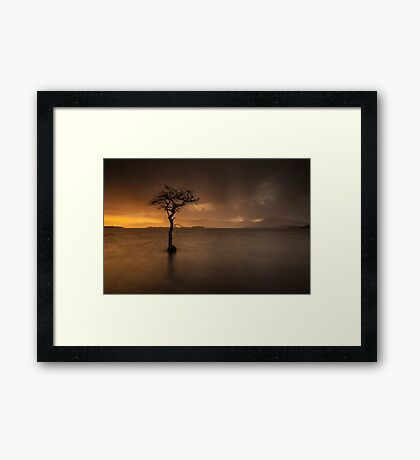 Here Comes The Rain Again Framed Print