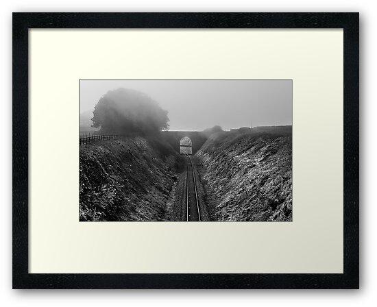 Where is Steam Train by Svetlana Sewell