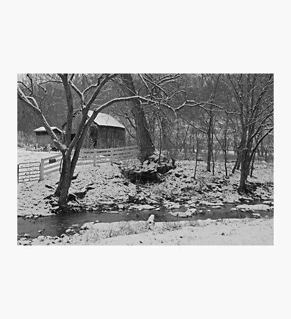 Kentucky Snow Photographic Print