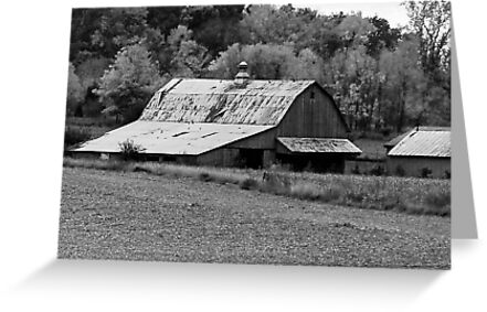 Old Barn  by mcstory