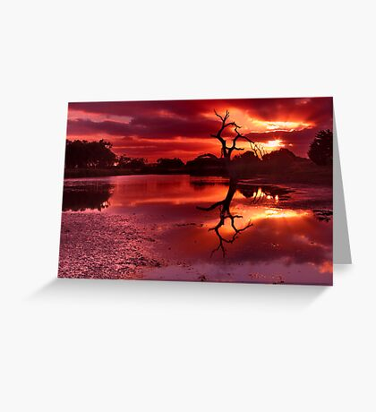 """""""Morning On The Minya"""" Greeting Card"""