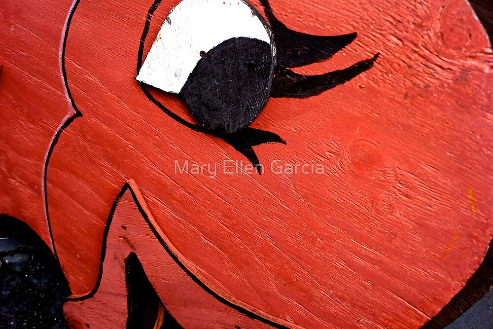 A Big Red Fish by Mary Ellen Garcia