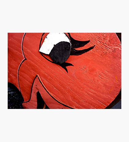 A Big Red Fish Photographic Print