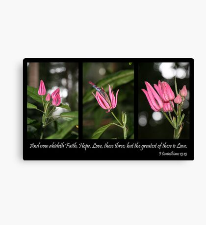 . . . these three . . . Canvas Print