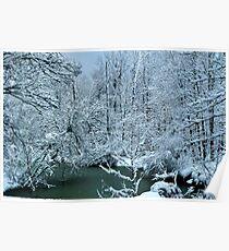 Southern Illinois Winter Scene 2_Dec 2012 Poster