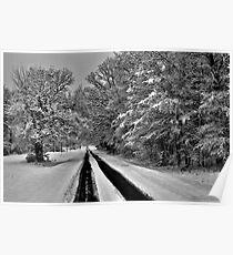Southern Illinois Winter Scene 7_ Dec 2012 Poster