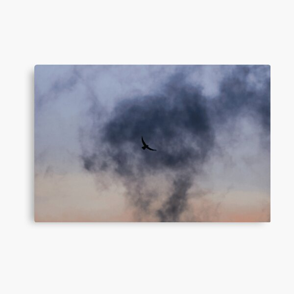 Nostalgia | Nature and Landscape Photography Canvas Print