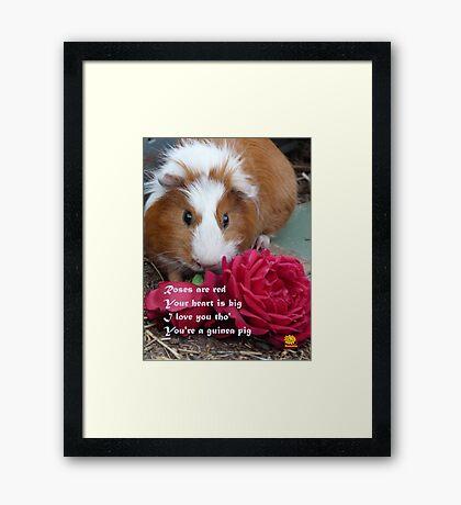 Guinea Pig Valentine Framed Print