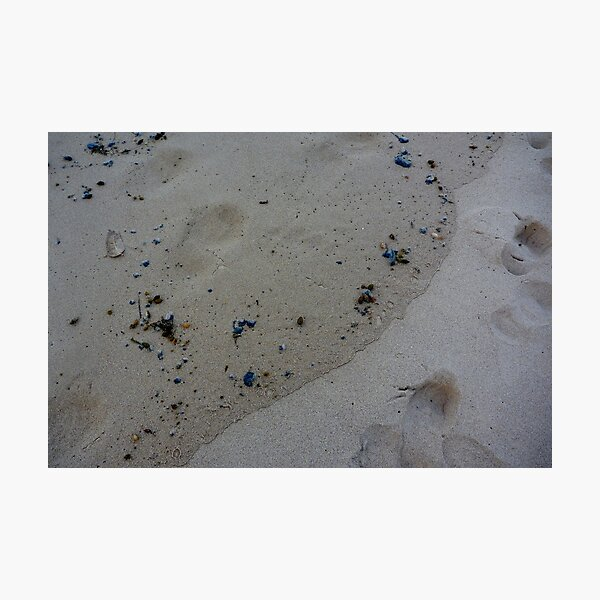Embroided Sea lace Photographic Print