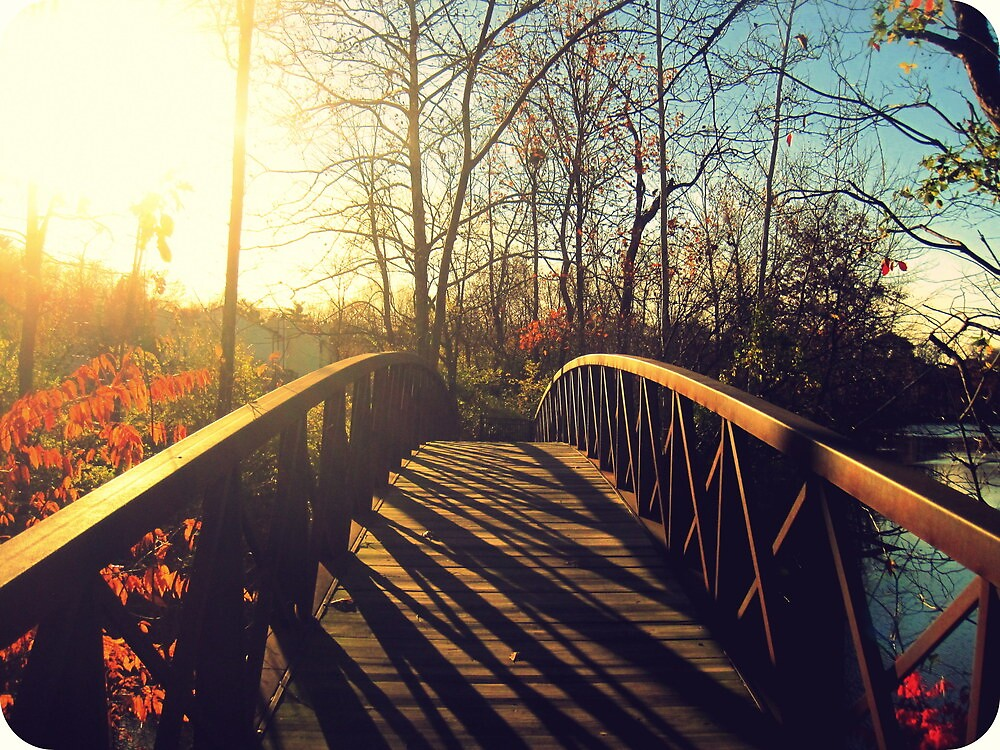 Autumn Bridge by LaurelMuldowney