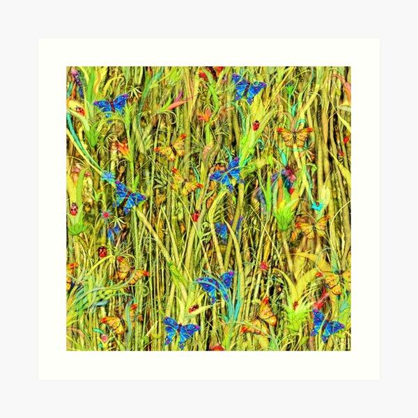 Qualias Butterflies Art Print