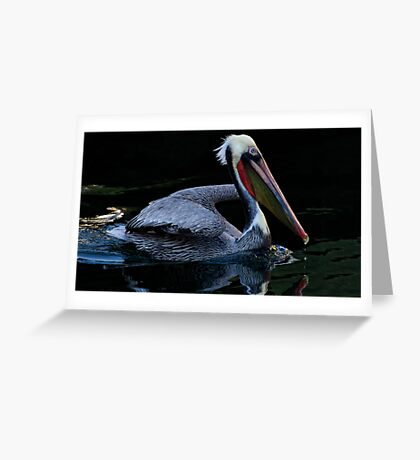 Smooth Swimming Greeting Card