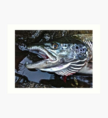 Your Highness   Salmon . Doctor Faustus. Art Print