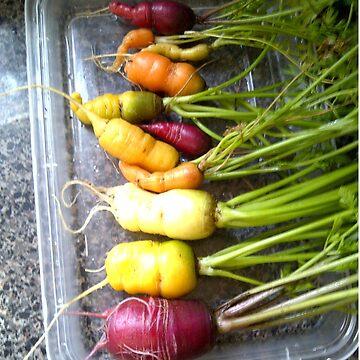 rainbow carrots by the-splinters