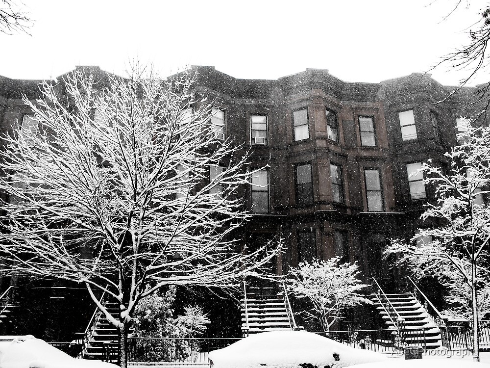 Brooklyn Winter by AbeCPhotography