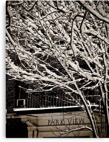 Park View  by AbeCPhotography