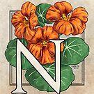 N is for Nasturtium card by Stephanie Smith