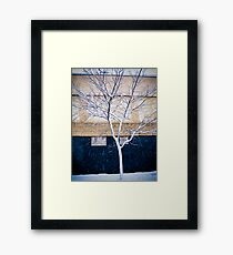 Brooklyn Walls Framed Print
