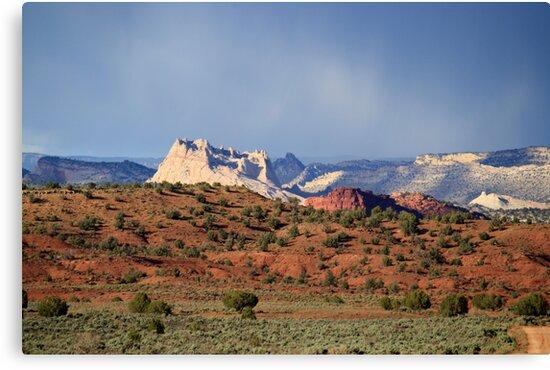 Rainbow Mountain,Zion National Park,Utah,USA by Anthony & Nancy  Leake
