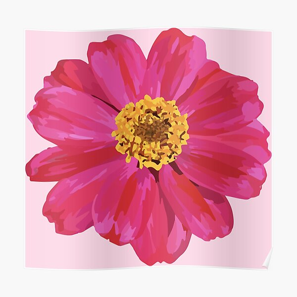 Pink Zinnia Poster
