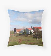 Lancaster County Farm Throw Pillow