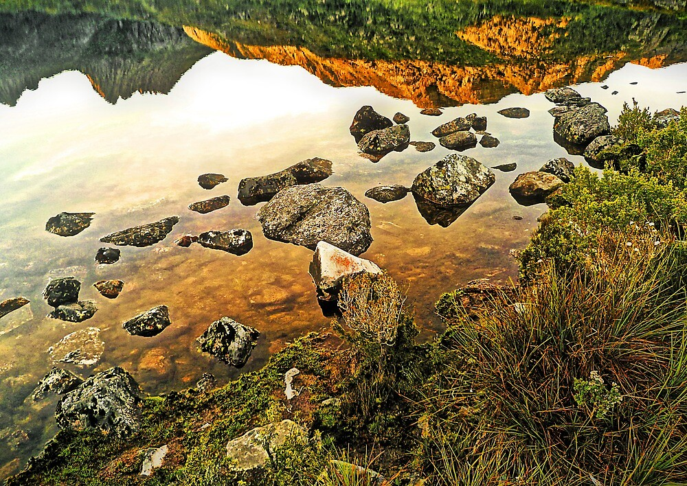 It's A Topsy-Turvy World - (unusual view of Dove Lake) by TonyCrehan