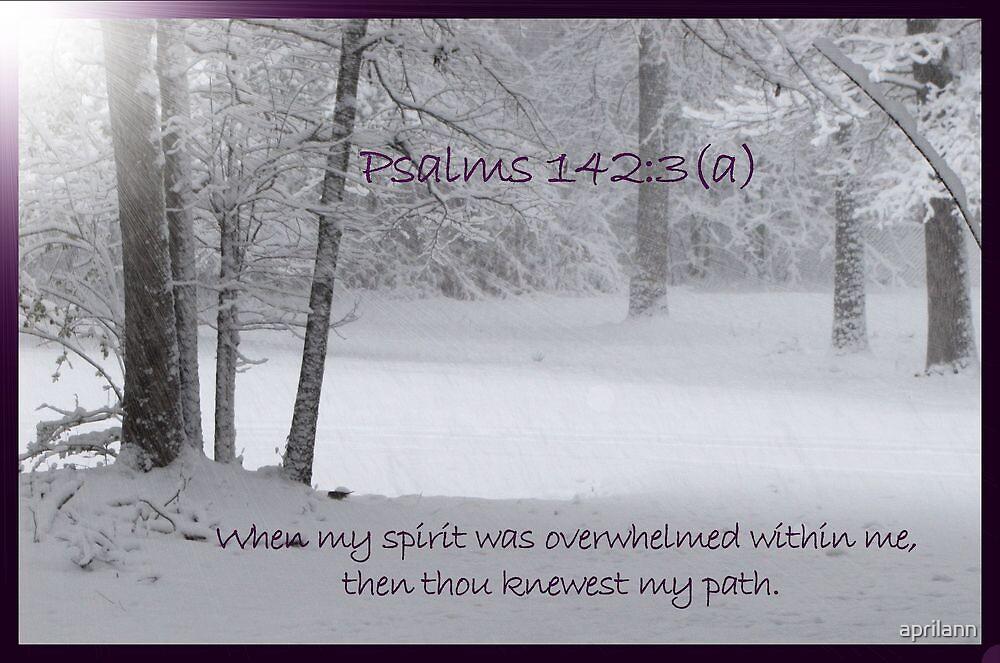 Thou knewest my path by aprilann