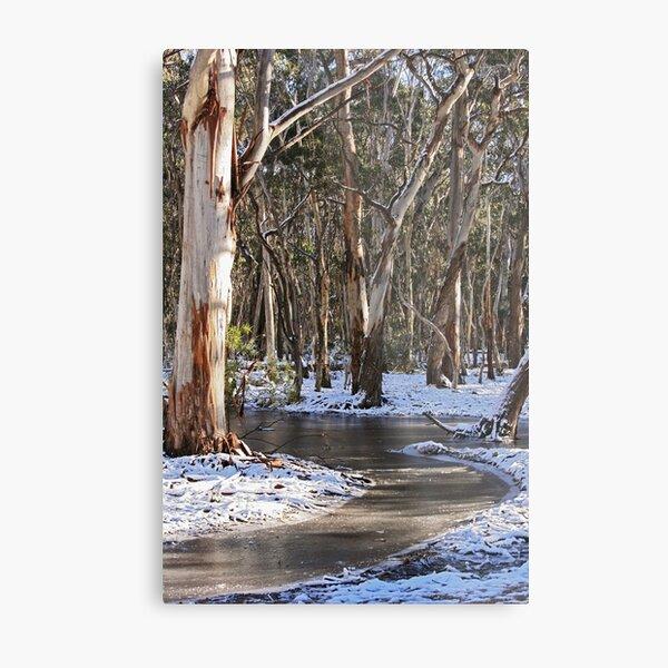 River of Ice Metal Print