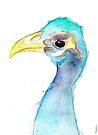 Bird Head by Kendra Shedenhelm